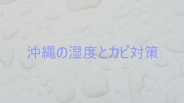 沖縄湿度とカビ対策