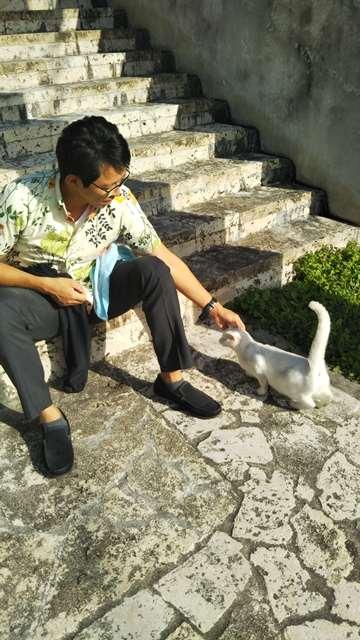 白い猫とぼーさん