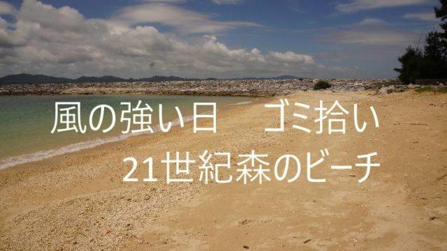 風の強い日のゴミ拾い21世紀ビーチ