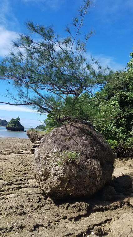 奥武島の風景8