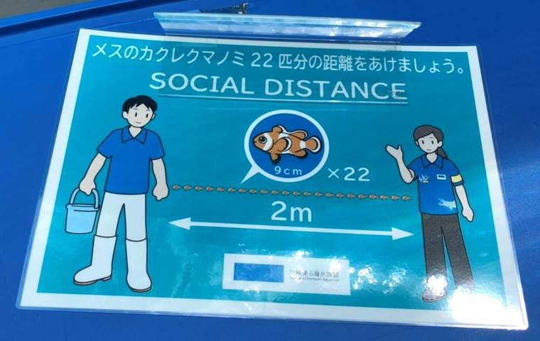 沖縄美ら海水族館8